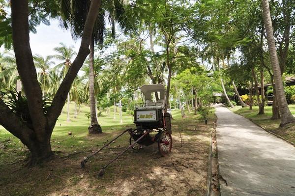 thailand-phuket-banraya-45