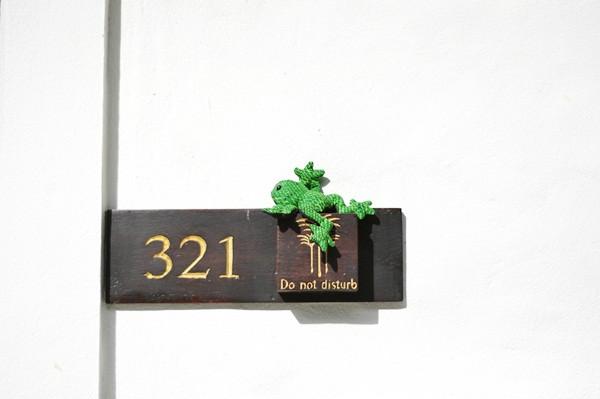 thailand-phuket-theracha-49