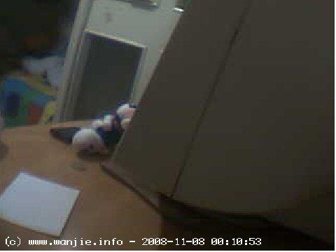 webcam01